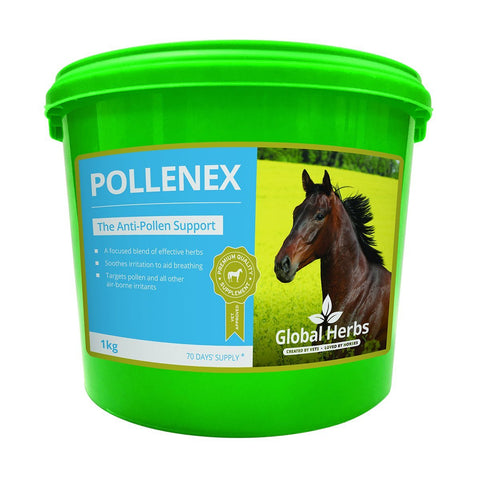 PolleneX (1 Kg) - Global Herbs