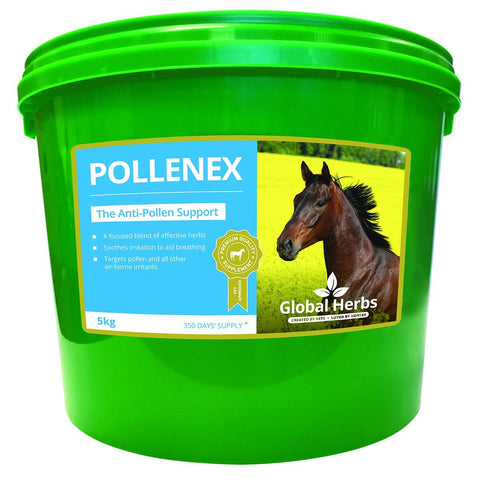 PolleneX (5 Kg) - Global Herbs