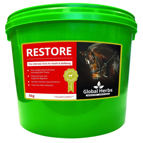 Restore Powder - Detoxifier (5Kg) - Global Herbs