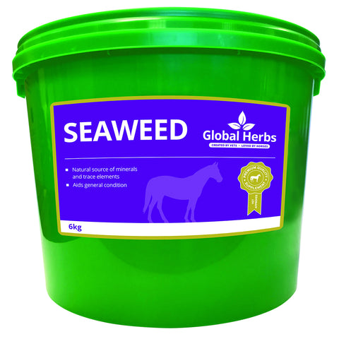 Seaweed (6kg) - Global Herbs