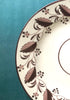 Hand painted 18th century sepia ware scrolling leaves patterned plate www.snowdenflood.com