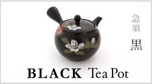 TOKONAME Tea Pot BLACK
