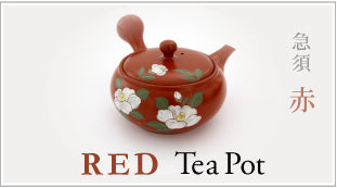 TOKONAME Tea Pot RED