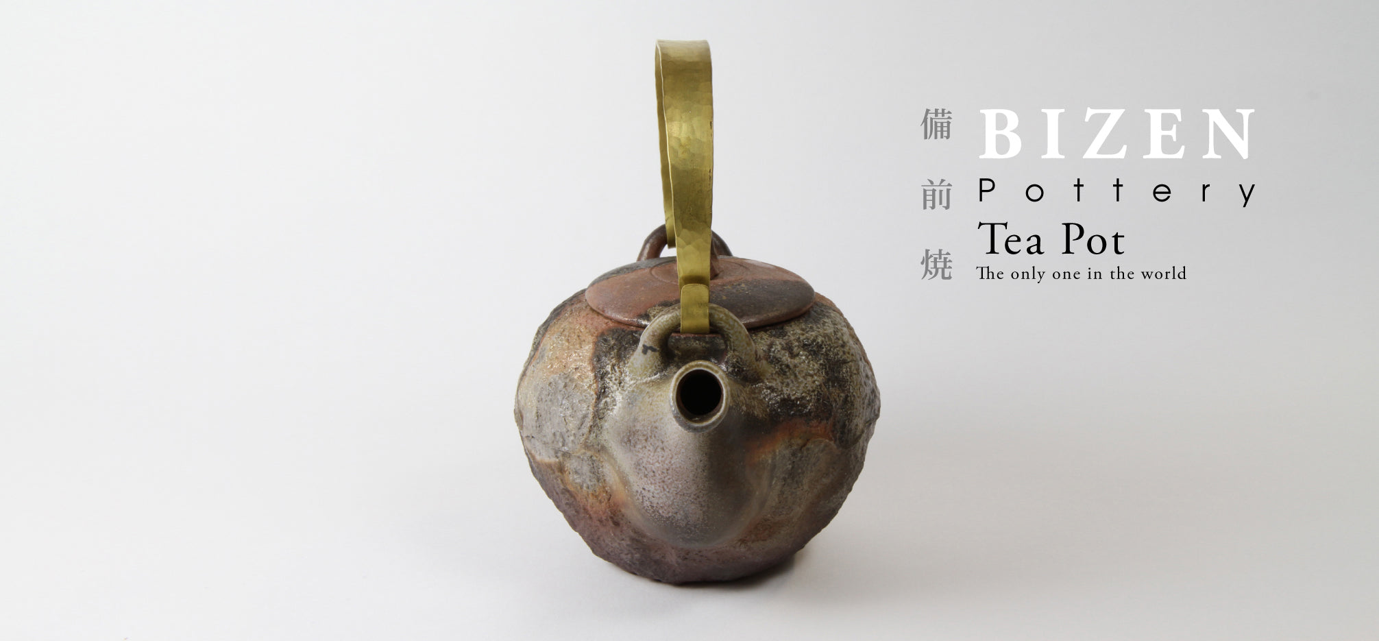 BIZEN Pottery Tea Pot The only one in the world