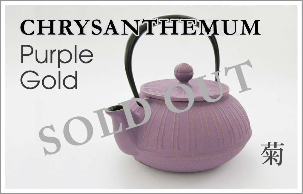 CHRYSANTHEMUM Purple Gold 菊