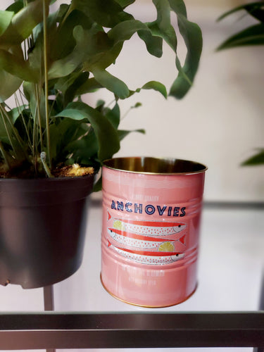 Pink Anchovies Tin Planter - 10 x 11cm