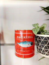 Load image into Gallery viewer, Red Mackerel Tin Planter - 11 x 13cm