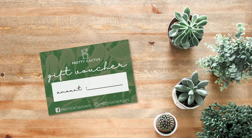 Pretty Cactus Gift Card