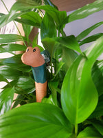 Willy the Terracotta Worm Water Sensor - changes colour as the soil drys out.