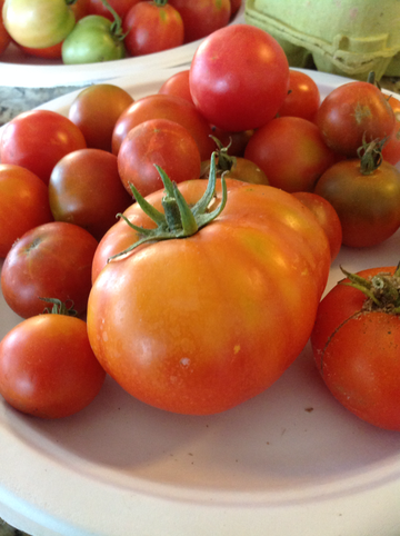 Heirloom Tomatoes 1lb