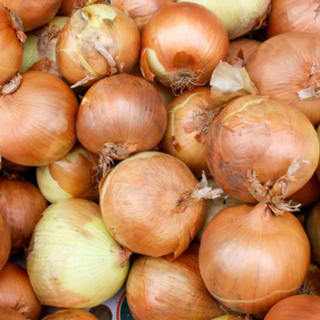 Heirloom Onions small Bundle
