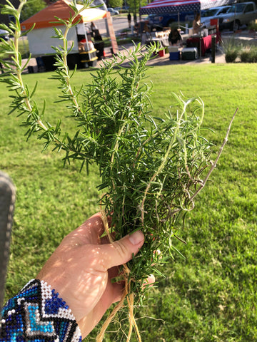 Organic Rosemary Bundle