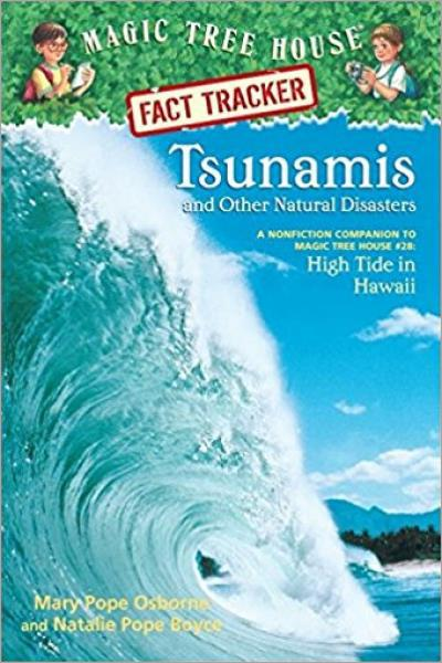 Tsunamis and Other Natural Disasters - Used