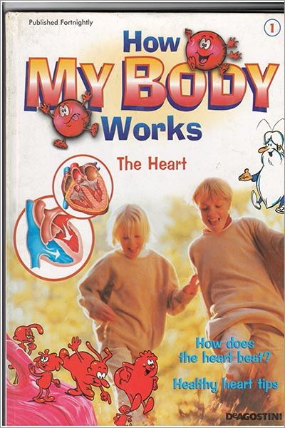 How My Body Works - Used