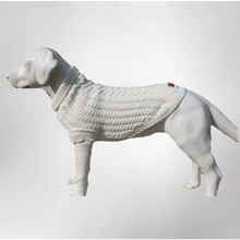 "Load image into Gallery viewer, Canine & Co ""Gelert"" Dog Jumper-Best4Bulldogs"