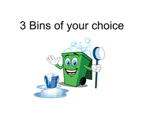 3 Bin cleaning service, As low as $13.29 a visit!
