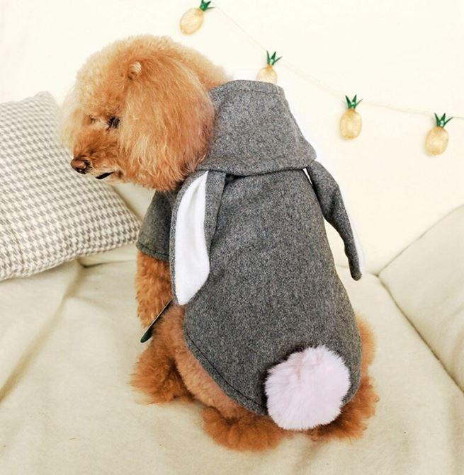 Gray Warm Winter Dog Hooded Jacket With Cute Rabbit Ears