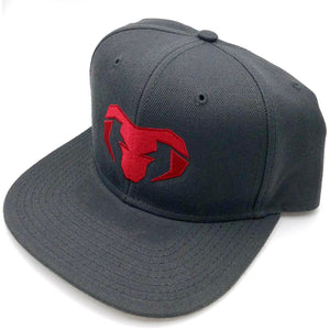 Snap back hat, Charcoal