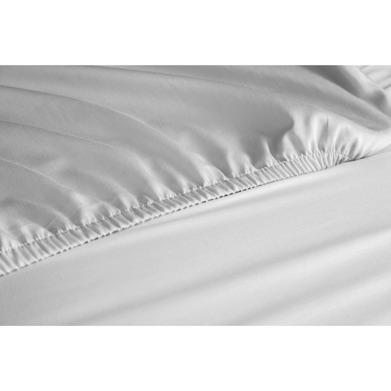 Value Collection Fitted Sheet (Case of 24)