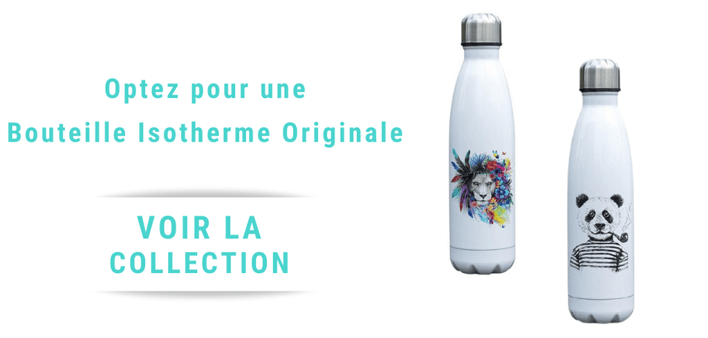 collection de gourde en acier inoxydable originale