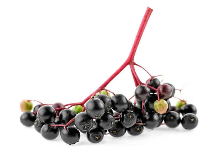 What are the benefits of elderberries?