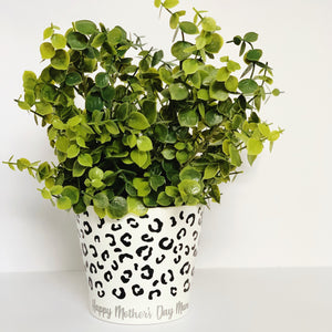 Personalised Leopard Plant Pot