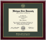 Church Hill Classics Diploma Frame Gold Embossed in Gallery (PhD/Medical)