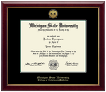 Church Hill Classics Diploma Frame Gold Engraved Medallion in Gallery (PhD/Medical)