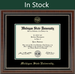Church Hill Bachelor/ Master Gold Embossed Diploma Frame in Chateau