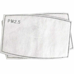 PRIMA - PM 2.5 REUSABLE FACE MASKS + 10 FILTERS FREE