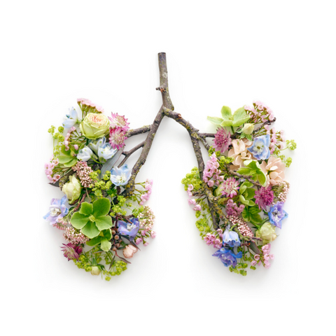 Flowers on Branches Shaped as Healthy Lungs