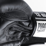 PHANTOM ATHLETICS - Boxhandschuhe MT-Pro