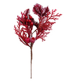12 in Burgundy Berry Twig