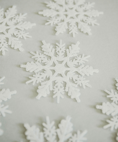 4 in Glitter Snowflake Ornament / Frosty