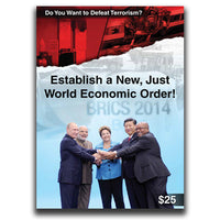 Do You Want To Defeat Terrorism? Establish a New, Just World Economic Order!