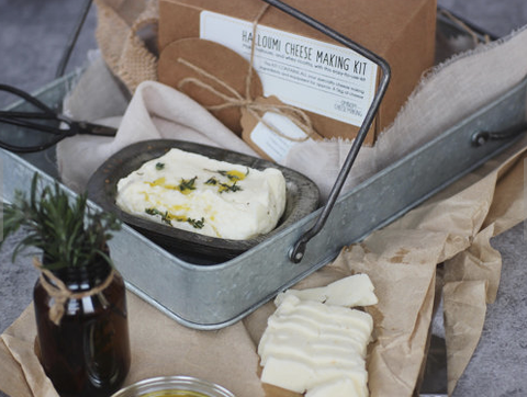 Home cheese making kit