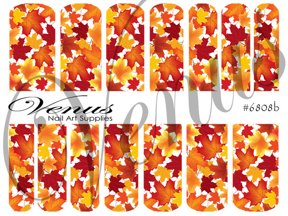 #6808b Autumn Life B (Clear/White)