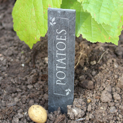 Engraved Personalised Slate Vegetable Plant Markers