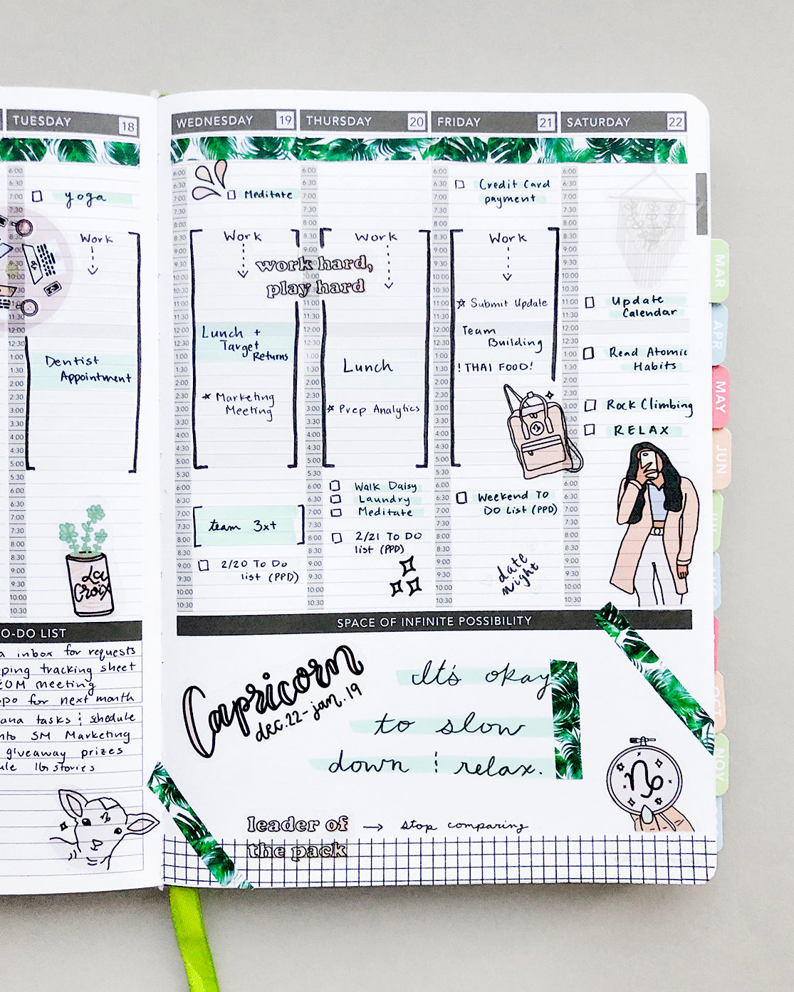 Capricorn Passion Planner Layout