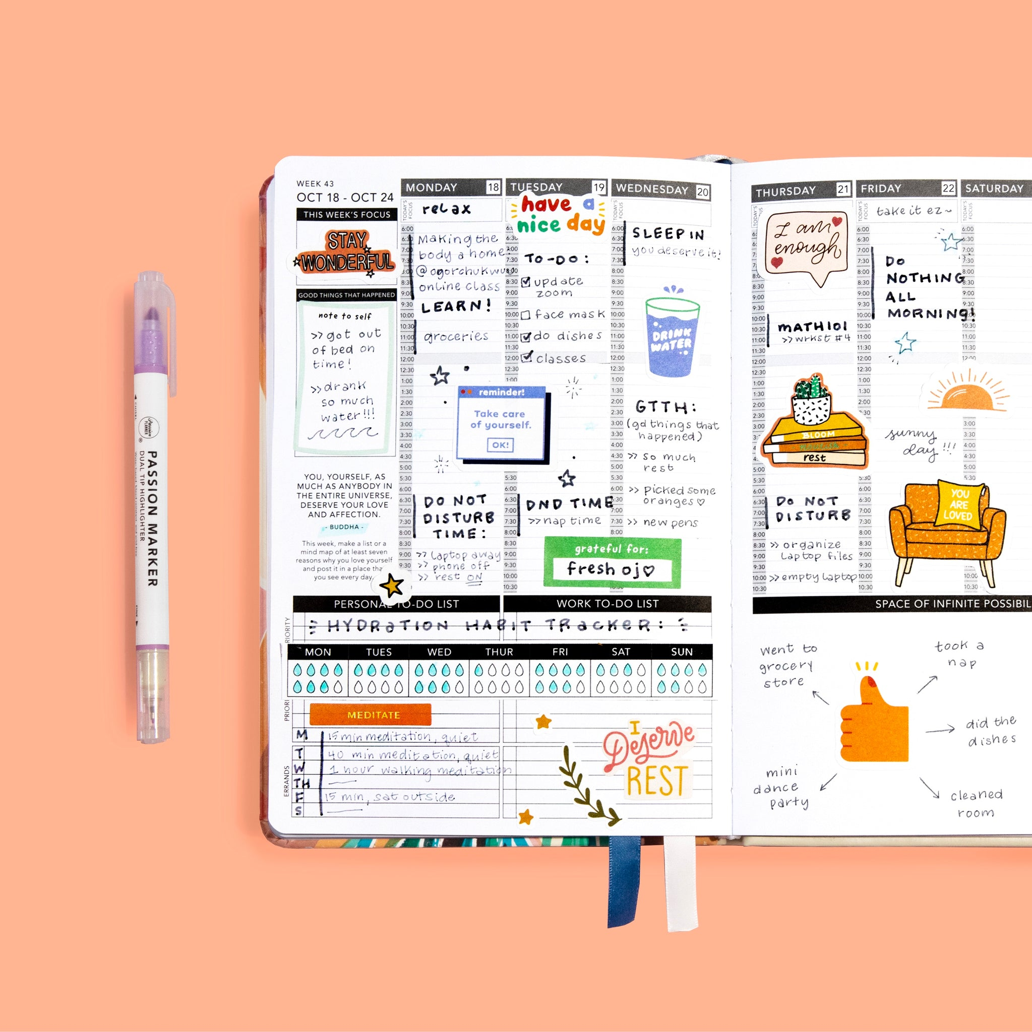 Passion Planner Weekly Layout Filled Out with Self-Care Activities and Water Tracker