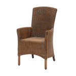 Paris Side Chair Lloyd Loom - Middle Station Furniture