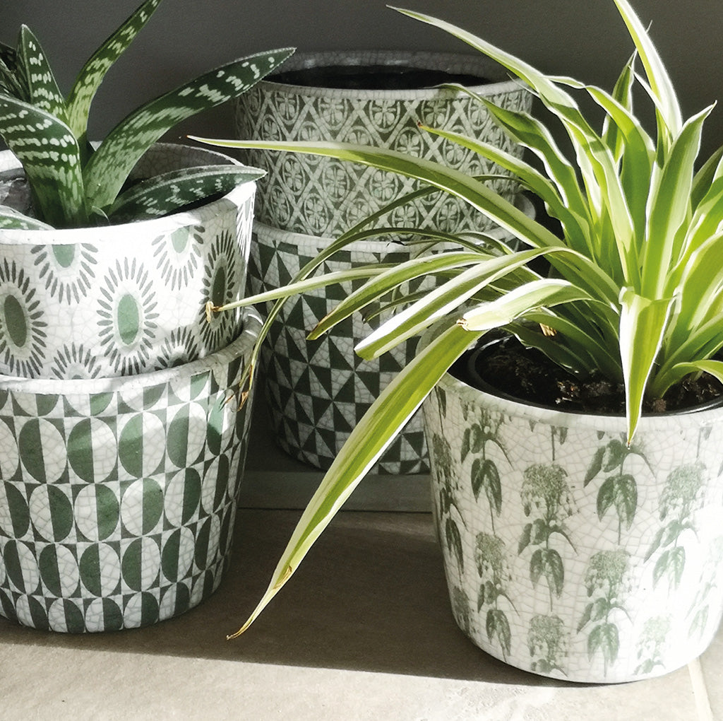PLANT POT ARTA VERDE  PKD 18 £2.90 EA. In Stock Early April