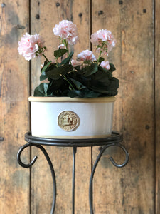 Kew Oval Planters - Set of 3 Ivory