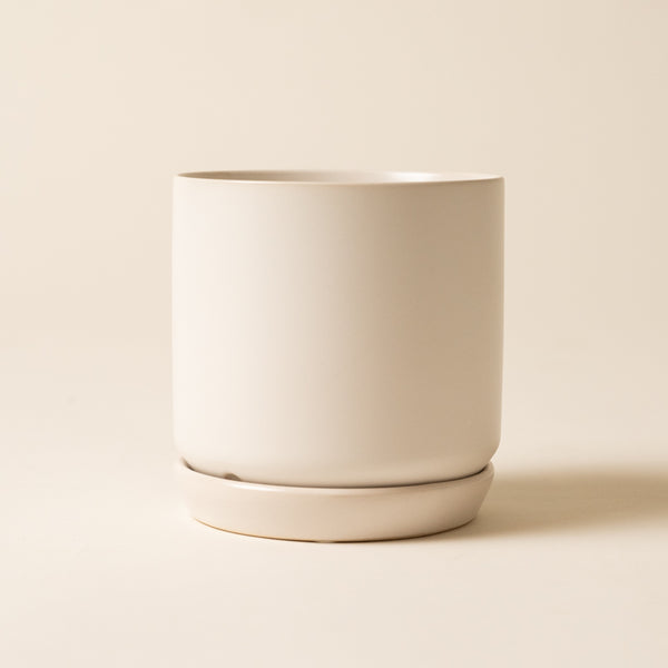 Matte White Pot With Tray