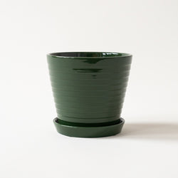 Green Wave Pot