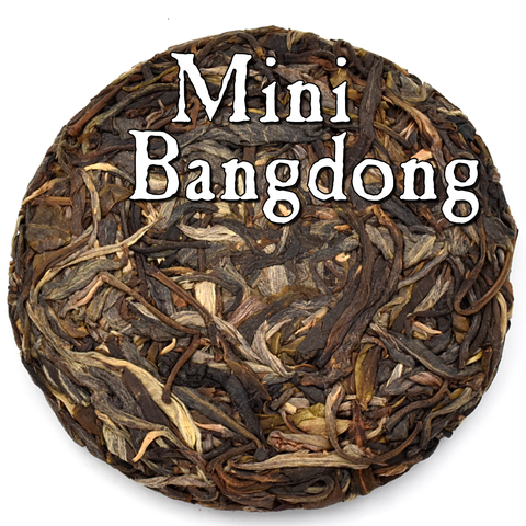 Mini Bangdong Cake (50g) Sheng / Raw Puerh Tea :: Seattle Inventory