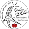 "2019 Spring ""Radio KXQM"" 100g Cake - Sheng / Raw Puerh Tea :: Seattle Inventory"