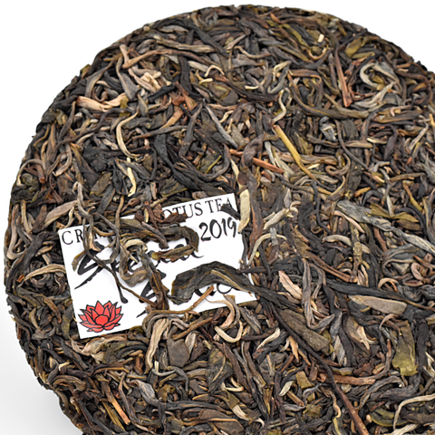 "Limited Edition 2019 ""Special Sauce"" Sheng / Raw Puerh Tea Blend :: FREE SHIPPING"