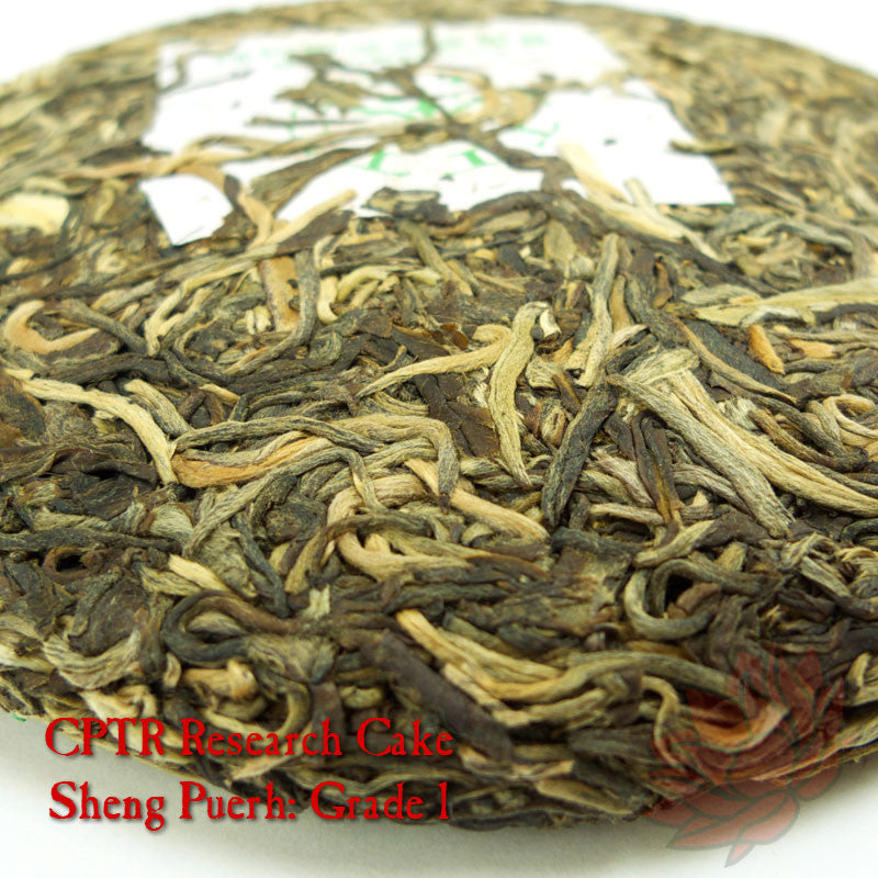 Puerh Education Tasting Set - Sheng / Raw - Leaf Grade