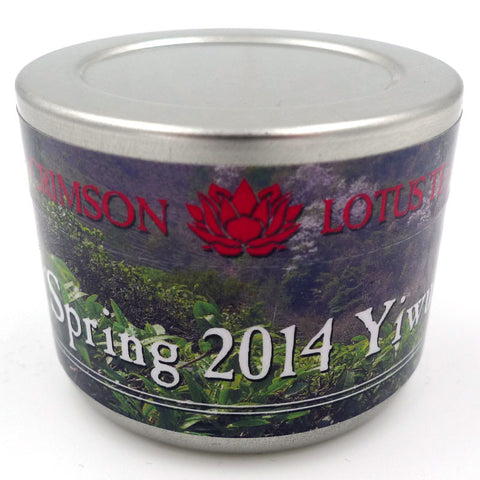 Tiny Tin of Yiwu - 2014 Sheng Puerh Tea